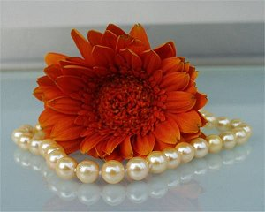 golden akoya pearls