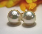 Pearl Earrings<br>South Sea Fire<br>8.0 - 8.5 mm