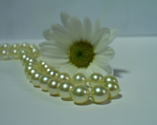 Wedding Jewelry at SelecTraders
